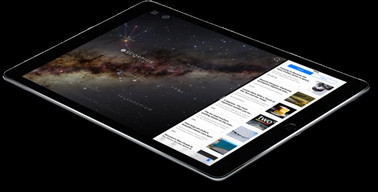 iPad-Pro-Gripzo-Gorilla-XL